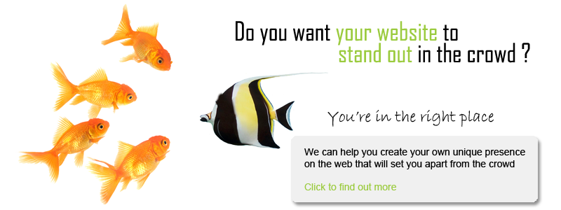 Get your website to stand out in the crowd with Sault Web Design
